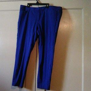 #42- women's blue pants